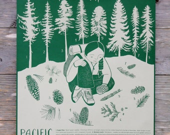 Pacific Northwest Conifer Identification Poster Print - Screenprint, Tree Art Prints Illustrations, Childrens Wall Art, Nature Poster, PNW