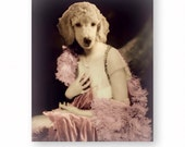 "Dog Art Print Poodle Animal Art Anthropomorphic Animals In Clothes Nursery Decor (3 Sizes Available) ""Honeysuckle Devereau"""