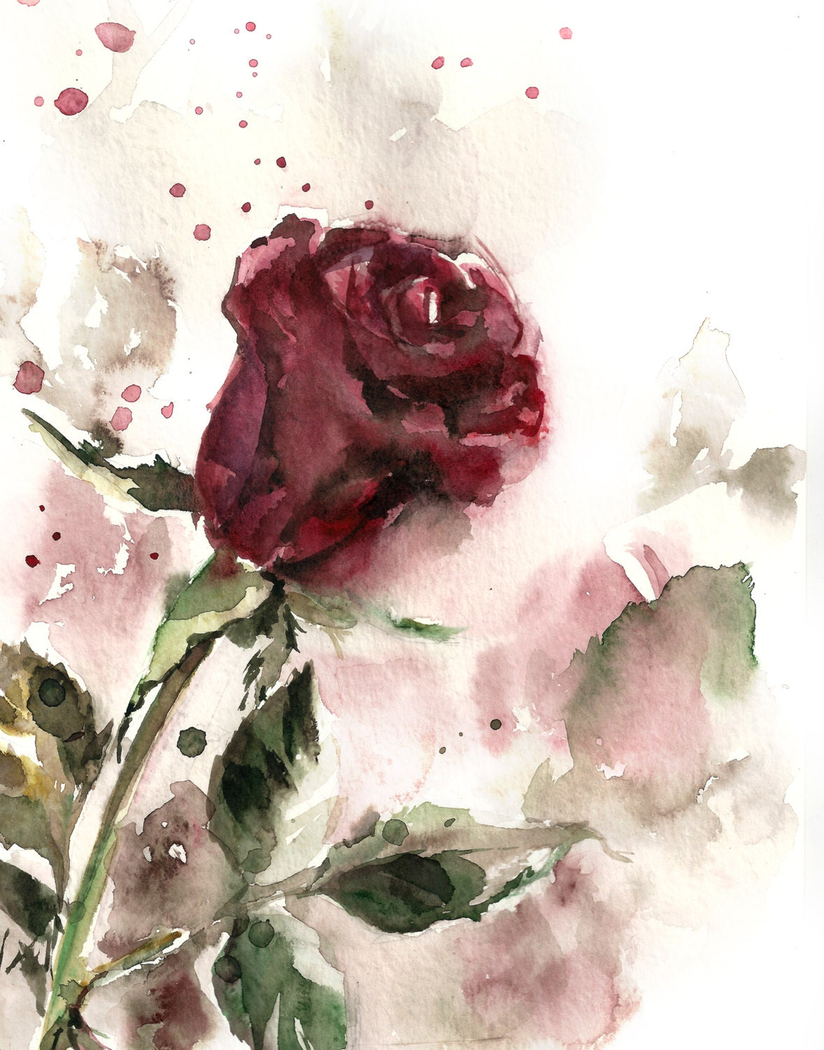 Rose Watercolor Painting Art Print Burgundy By Canotstopprints