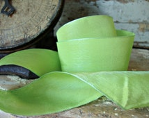 Parrot Green Iridescent Ribbon
