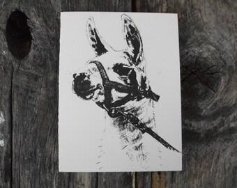 Llama pen and ink drawing note card, Rustic animal art stationary, Inspirational card, Holiday card, Invitation blank card, FREE US SHIPPING