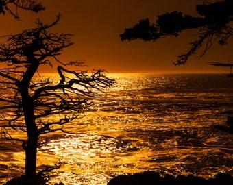 California Photography, 17 Mile Drive, Landscape Photography, Monterey Bay, Sunset Photo,