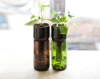herb pot-hydroponics-recycled bottle-recycled glass-vertical planter- indoor garden-indoor planter- aromatic herbs  by VERDE BOTELLA