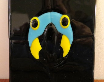 Unusual Hyacinth Macaw glass plaque on black background