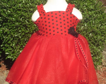 Lady Bug Themed Party Dress