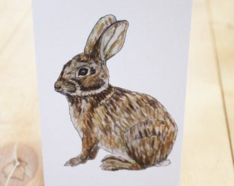 Greeting Card: Eastern Cottontail Rabbit 5x7