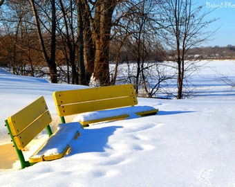 Yellow Bench in Winter Snow