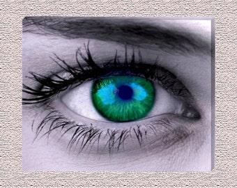 "Green Blue Eyeball Framed Canvas Gallery Wrap Wall Hanging 16"" x 20"""
