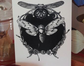 A6 - Entomological Medallion - printed Reproduction - postcard Format
