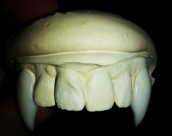Vampire Fangs Hand Crafted to Fit Your Teeth Classic Style Movie Quality
