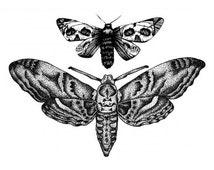 Sets Butterflies temporary tattoos