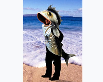 Fish costume adult size handmade eco animal friendly for Fish costume adult