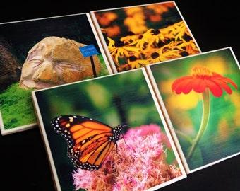 Coastal Maine Botanical Garden Custom Tile Photo Coasters