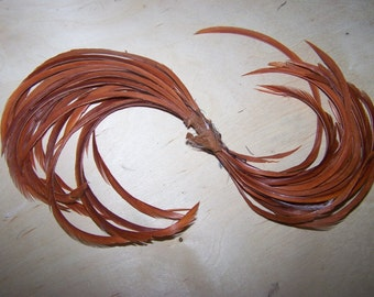 Beautiful vintage curled Millinery feathers, rust colored
