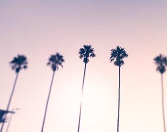 Sunset Beach Decor, Palm Tree Photo, California Summer, Beach Landscape Photography, Purple, Mauve, Pink, Beach Wall Art, Pastel Home Decor