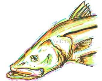 Snook - Neon Fish Series - David Danforth