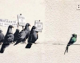 Banksy Protesting Birds Poster Print