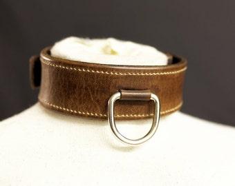 FetLeather Collar