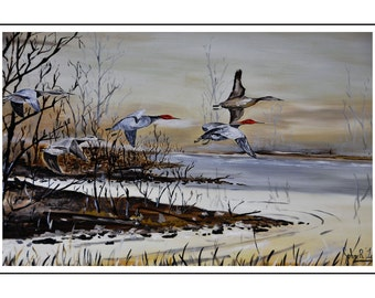 Cambridge Geese Flying  Oil Painting done in 1984