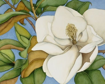 Watercolor painting...WHITE WONDER...magnolia...giclee