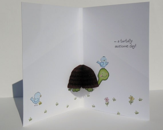 Birthday card 3d pop out card honey pop unique card turtle large