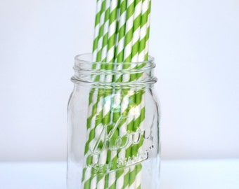 Striped Paper Straws Green Apple Pack of 25 Party Decor