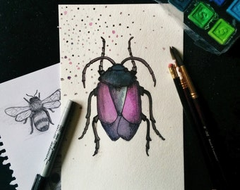 Beetle Watercolor