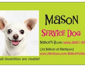 Isdr Service Dog