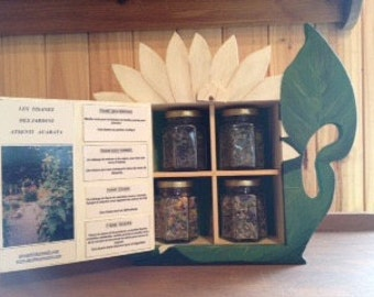 Box with 4 blends of teas