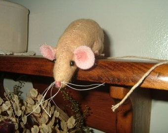 PRIMITIVE MOUSE~Looking Down