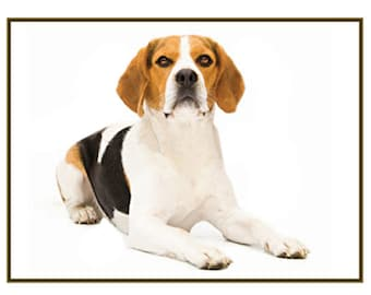 Beagle Notecards! Any breed notecards packaged in a plastic bag. Free Shipping!
