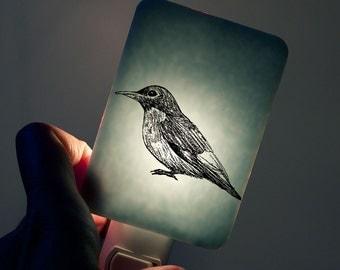 Bird Nightlight Robin on Powder Blue - Fused Glass Night Light - Gift for Baby Shower or Nature Lover - Spring Wildlife