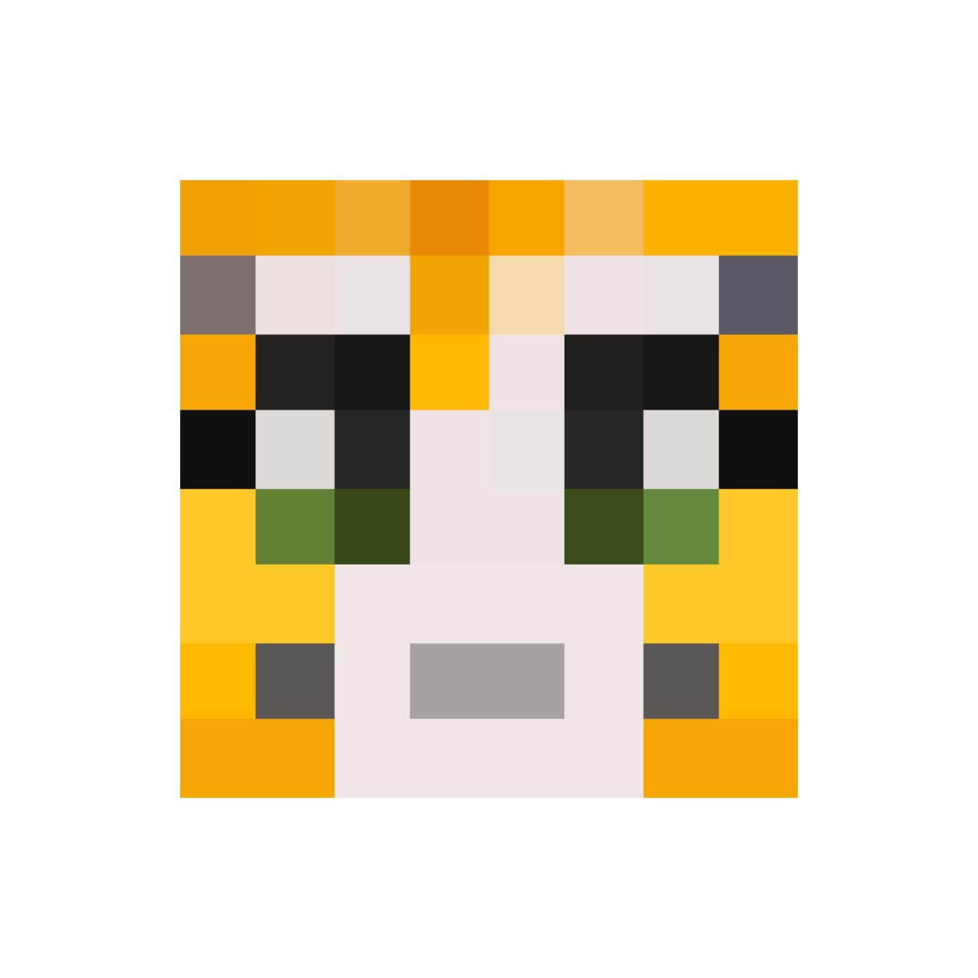Image Gallery stampylongnose face