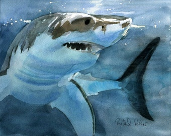 Great White Shark art Print of my watercolor painting realistic huge big large custom hand painted handmade ocean sea surf gift for boy