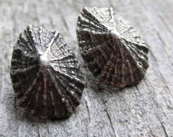 Saint Barthelemy LIMPET sterling silver post stud earrings