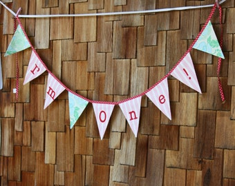 SALE I'm One! Bunting Banner Birthday Flags, Girl Themed Photo Prop, Nursery Decoration Party Banner. Shabby Chic Red Pink Designer Fabrics.