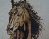 Horse Portrait Memorial Original Wood Burn Wall Plaques 12 x 12 inch on Birch by Pigatopia