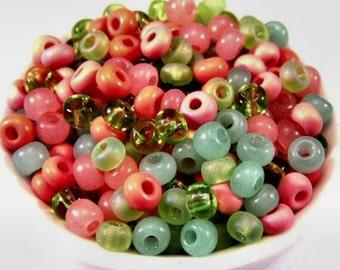 Czech Glass Seed Bead Tutti Frutti Mix 6/0 E Bead : LAST 25 Grams