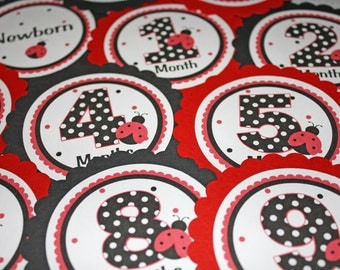 LADYBUG Baby's 1st Year Tags / Ladybug 1st Year Tags / Ladybug First Year Tags / Ladybug Monthly Photo Tags / Ladybug Birthday Party