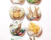 Vintage Chicks and Bunnies Flair