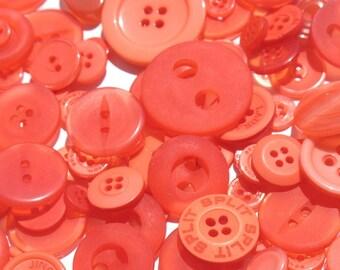 Blood Orange - Button Selection