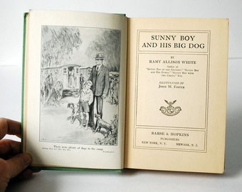 Vintage Childrens Book, Sunny Boy Series, 1920s Illustrated Book, Sunny Boy and His Big Dog, Ramy Allison White, First Edition, Animal Story