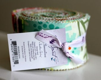 "SALE CLEMENTINE Design Jelly Roll 2.5"" strips fabric by Heather Bailey - Freespirit Fabrics"