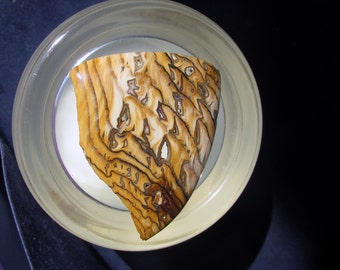 Hell's Canyon Petrified Wood Cabochon