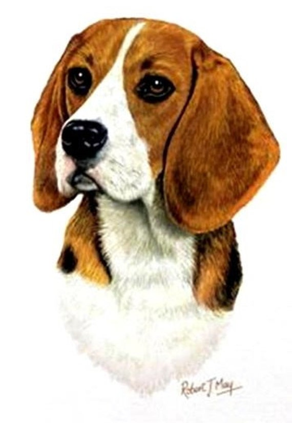 BEAGLE DOG HEAD on Twelve 6 inch Identical Fabric Squares for Quilting and Sewing