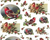 Made In Italy Rice Paper Decoupage Sheet Vintage Images Robins Birds Holly Christmas  RCP-AN-03