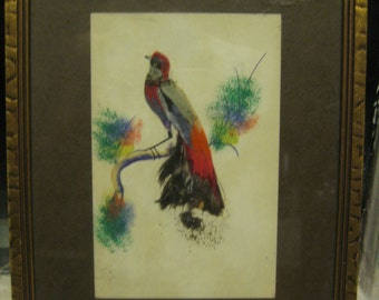 Vintage Bird, Feather pictures, 6 x 8.5, Red, black, gray,  hand painted