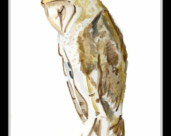 Barred Owl - 8x10 Artist Signed Double Mattted Decorative Print