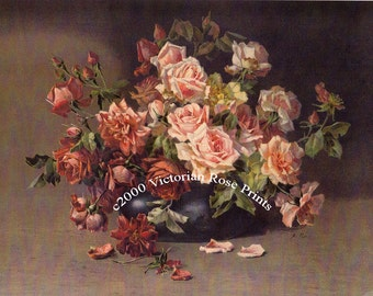 French Baby Pink Tea Roses Print Catherine Klein Half Yard Long Rose Flower Floral