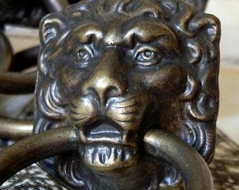 ornate lion metal drawer handle... lions...  Home Decor...   T 10
